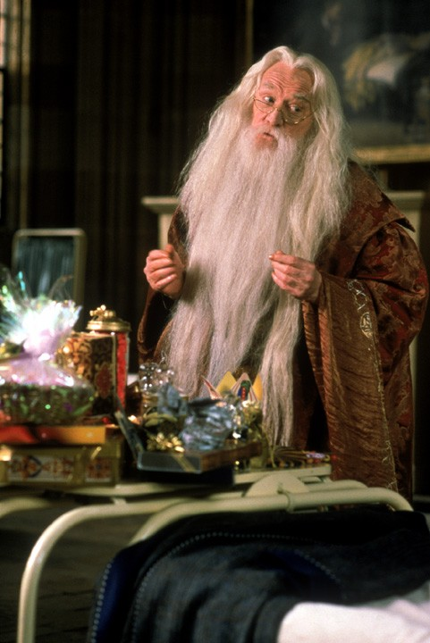 Dumbledore Gay Photo