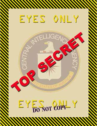 Spying and Policymaking Don't Mix