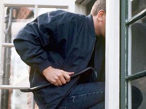 British Burglar Photo
