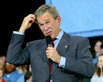 Bush Scrathing Head