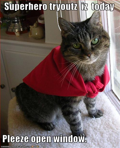 cat-tries-out-to-be-a-superhero