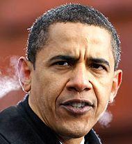 ObamaSteamed_sm