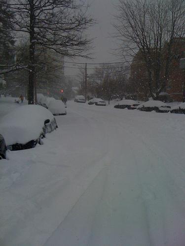 dc-snow-cars