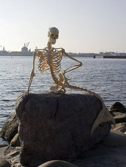mermaidskeleton