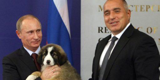 Vladimir Putin's New Dog: Buffy