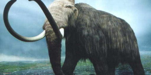 Scientists Want To Bring Back The Wooly Mammoth
