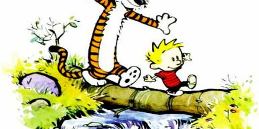 Theology of Calvin and Hobbes