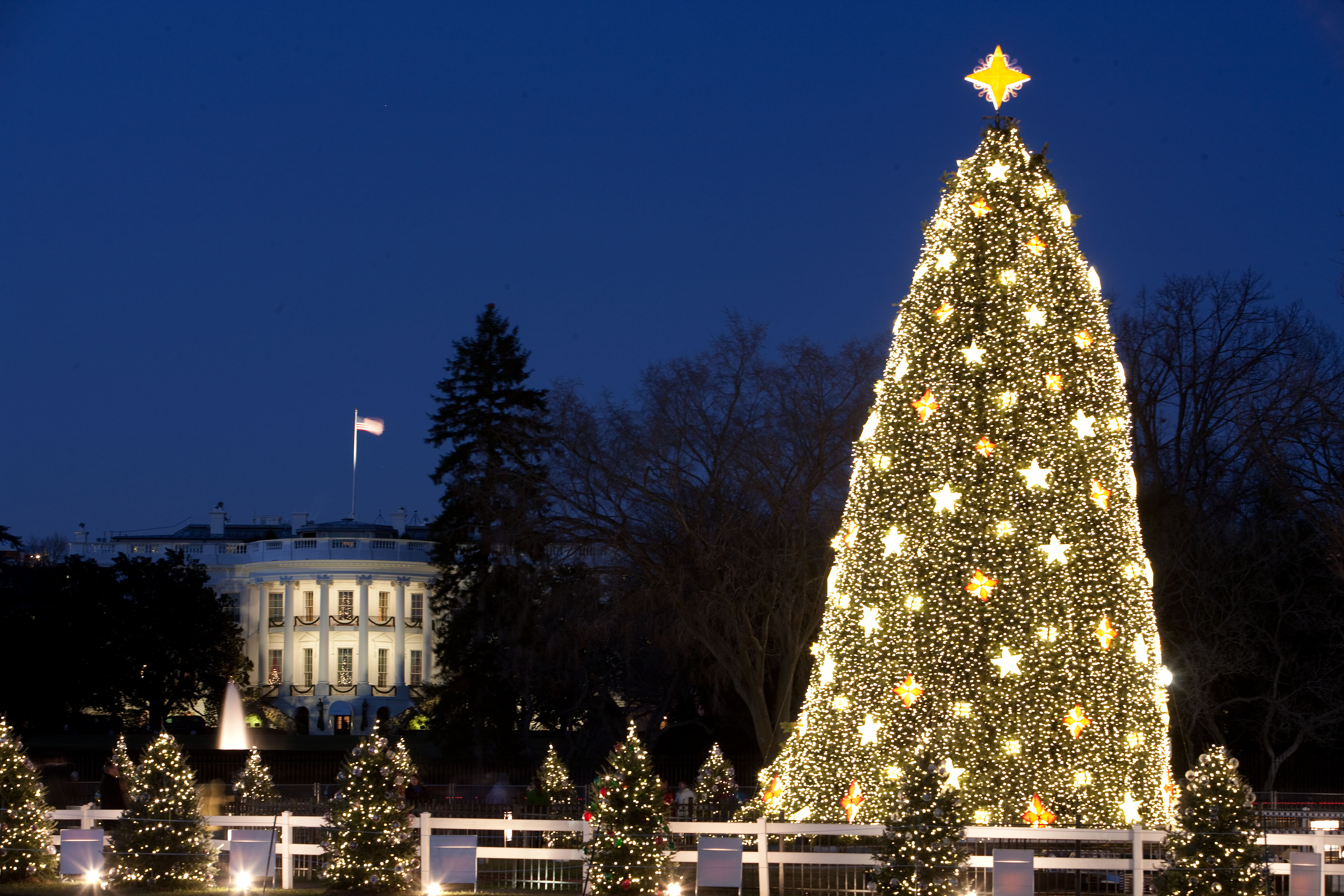 White_House_and_the_National_Christmas_Tree_in_Washington,_D.C.,_Dec._16,_2009