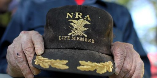 The N.R.A.'s Bizarre Response To The Sandy Hook Shootings
