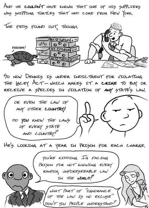 ignorance-turtles