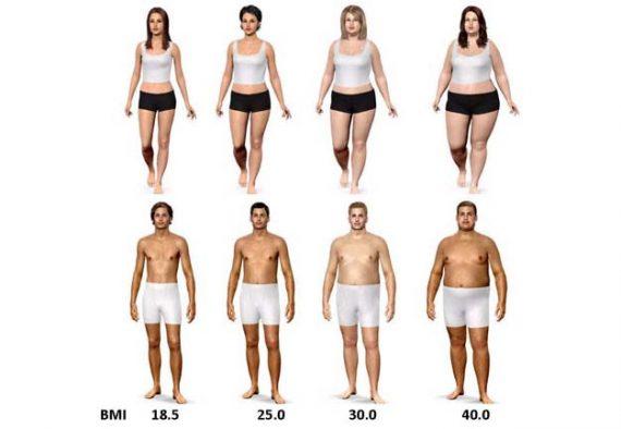 obesity-study