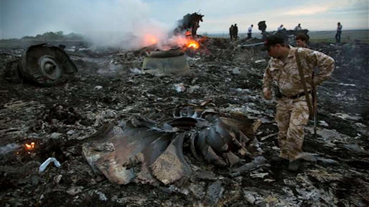 Malaysia Air Flight 17 Crash Scene