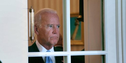 Joe Biden 2020?