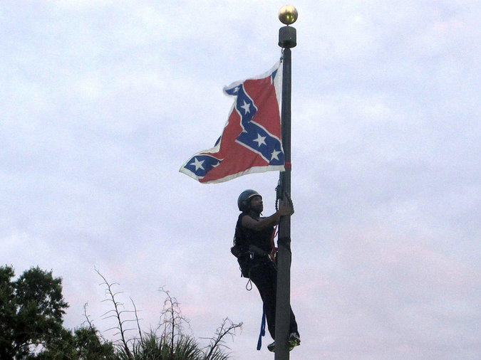 Confederate Flag Protester