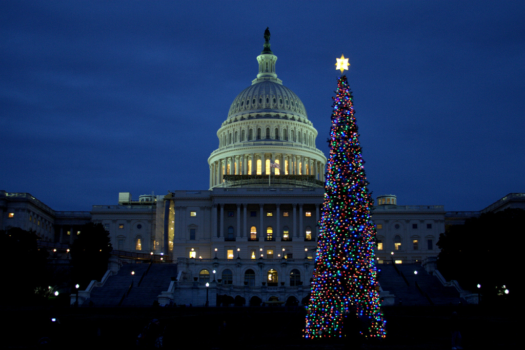 Capitol Building Christmas Tree