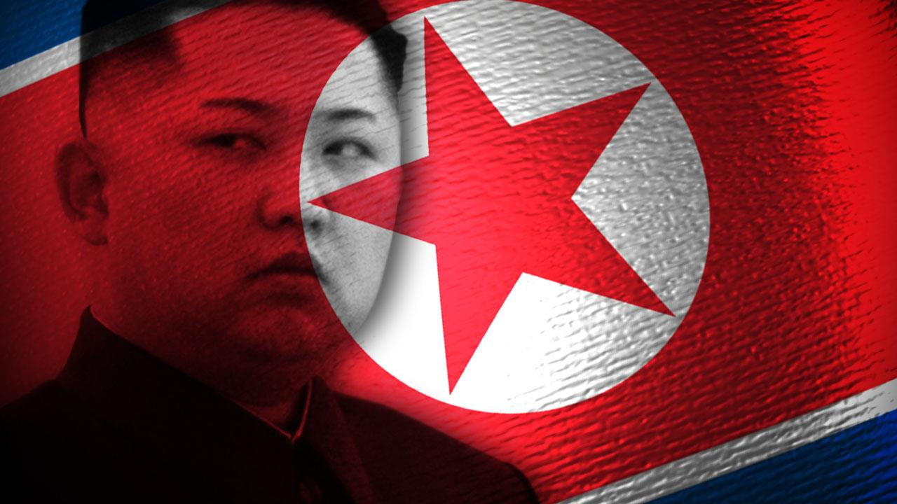 Kim Jong Un North Korean Flag