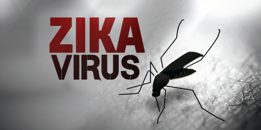 Zika Virus Concerns Lead To Calls To Postpone or Move 2016 Olympics
