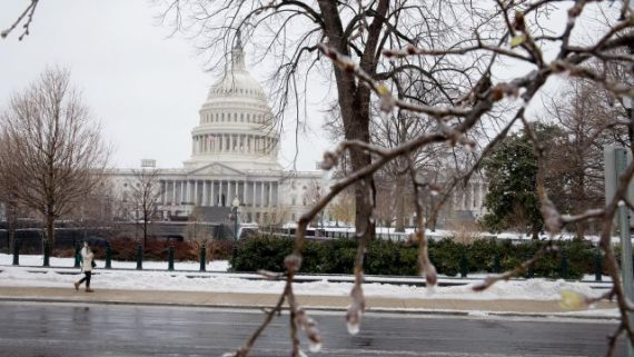 Snow and ice cover early blooms on trees near the US Capitol in Washington, DC March 14, 2017 Winter Storm Stella dumped snow and sleet Tuesday across the northeastern United States where thousands of flights were canceled and schools closed, but appeared less severe than initially forecast. After daybreak the National Weather Service (NWS) revised down its predicted snow accumulation, saying that the storm had moved across the coast. / AFP PHOTO / Tasos Katopodis (Photo credit should read TASOS KATOPODIS/AFP/Getty Images)