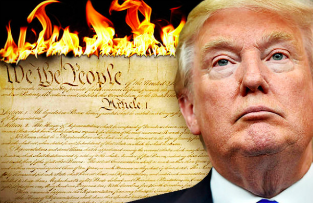 Trump Burning Constitution