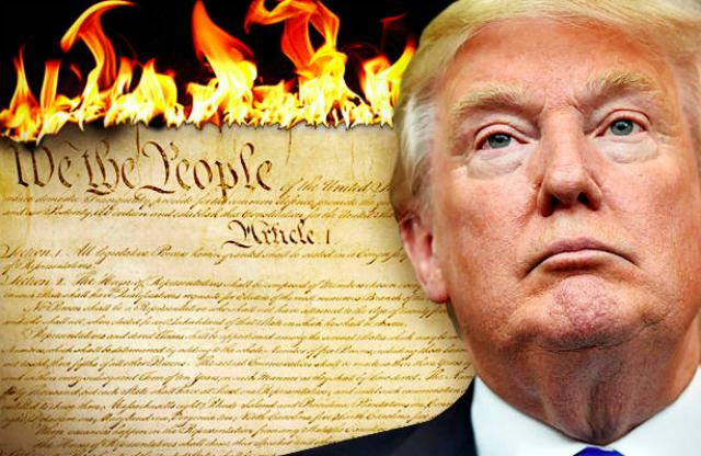 Trump Burning Constitution