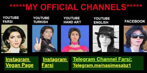 YouTube Shooter Nasim Aghdam Was Crazy